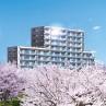 kakegawa
